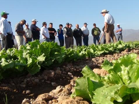 Amplían plazo para que agricultores presenten proyectos al primer concurso de Desarrollo de Inversiones en el Huasco