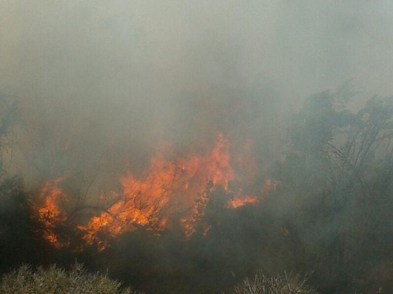Bomberos no puede controlar incendio en Quebrada Honda