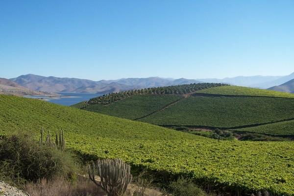 Regantes de Atacama y Coquimbo disponen de $1.000 millones para proyectos de obras medianas