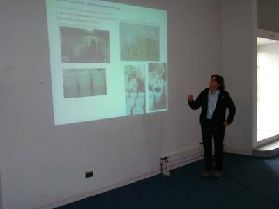 Presentan resultados de estudio sobre contaminación de olivos del Huasco