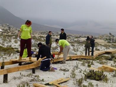 Voluntarios del programa Vive tus Parque mejoraron la infraestructura del Parque Nacional Llanos de Challe