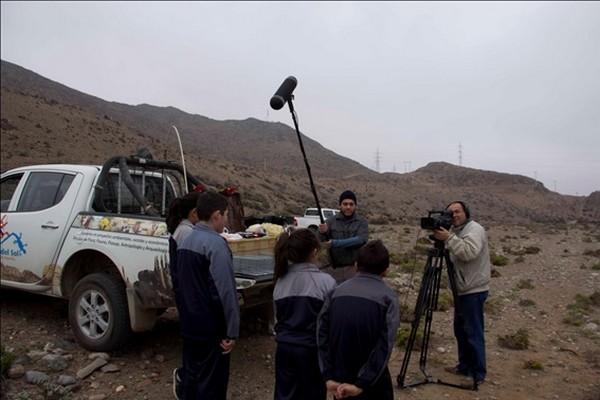 Biodiversidad de Atacama ahora estará presente en la web