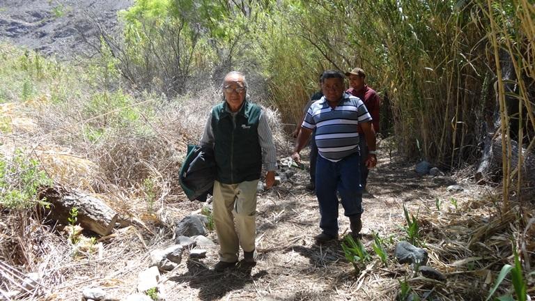 Senderos turísticos rescatarán el bosque nativo de Alto del Carmen