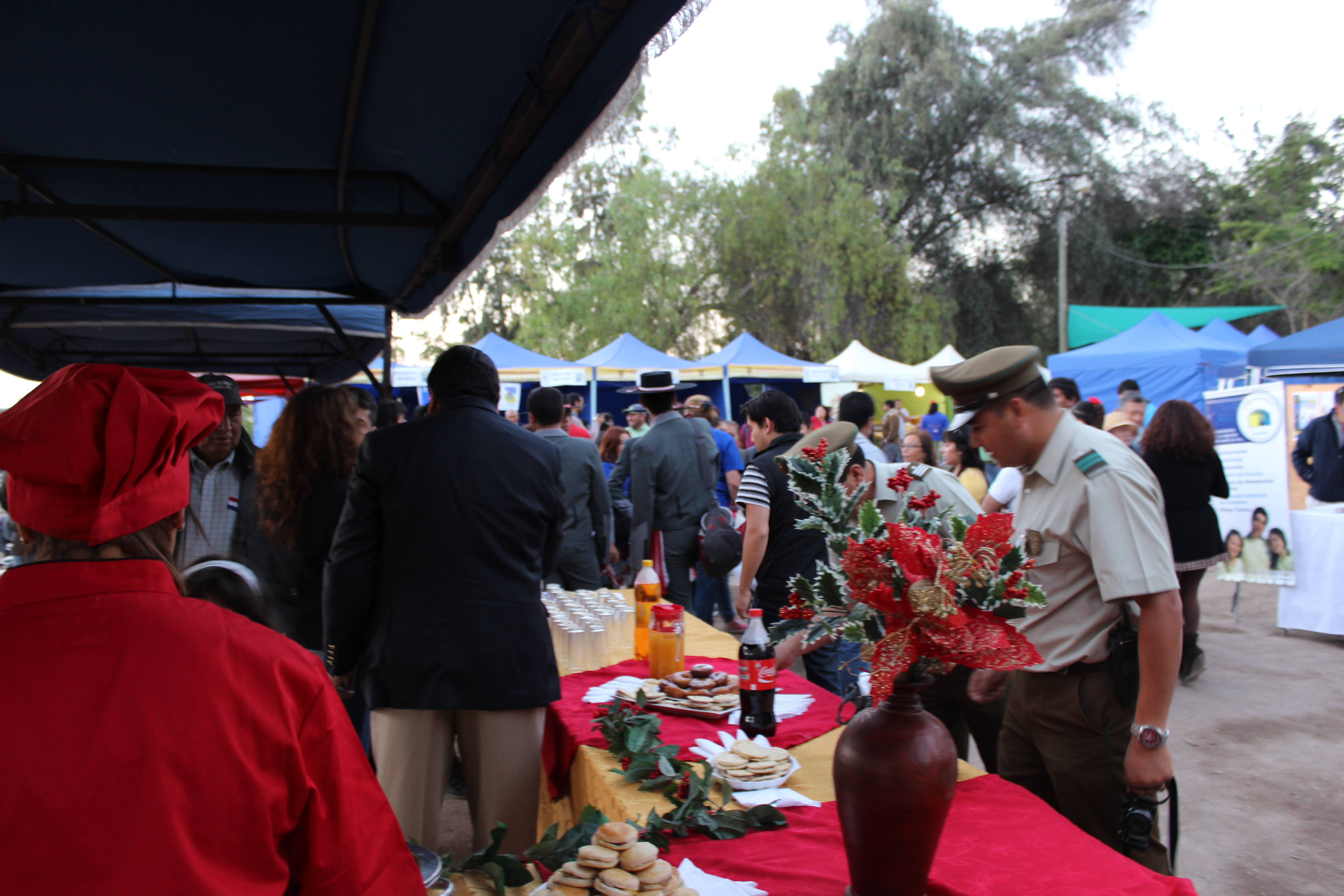Este sábado comienza XV versión de Expo Silvoagropecuaria en Vallenar