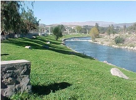 Paseo Ribereño de Vallenar podría ser considerado Humedal Urbano