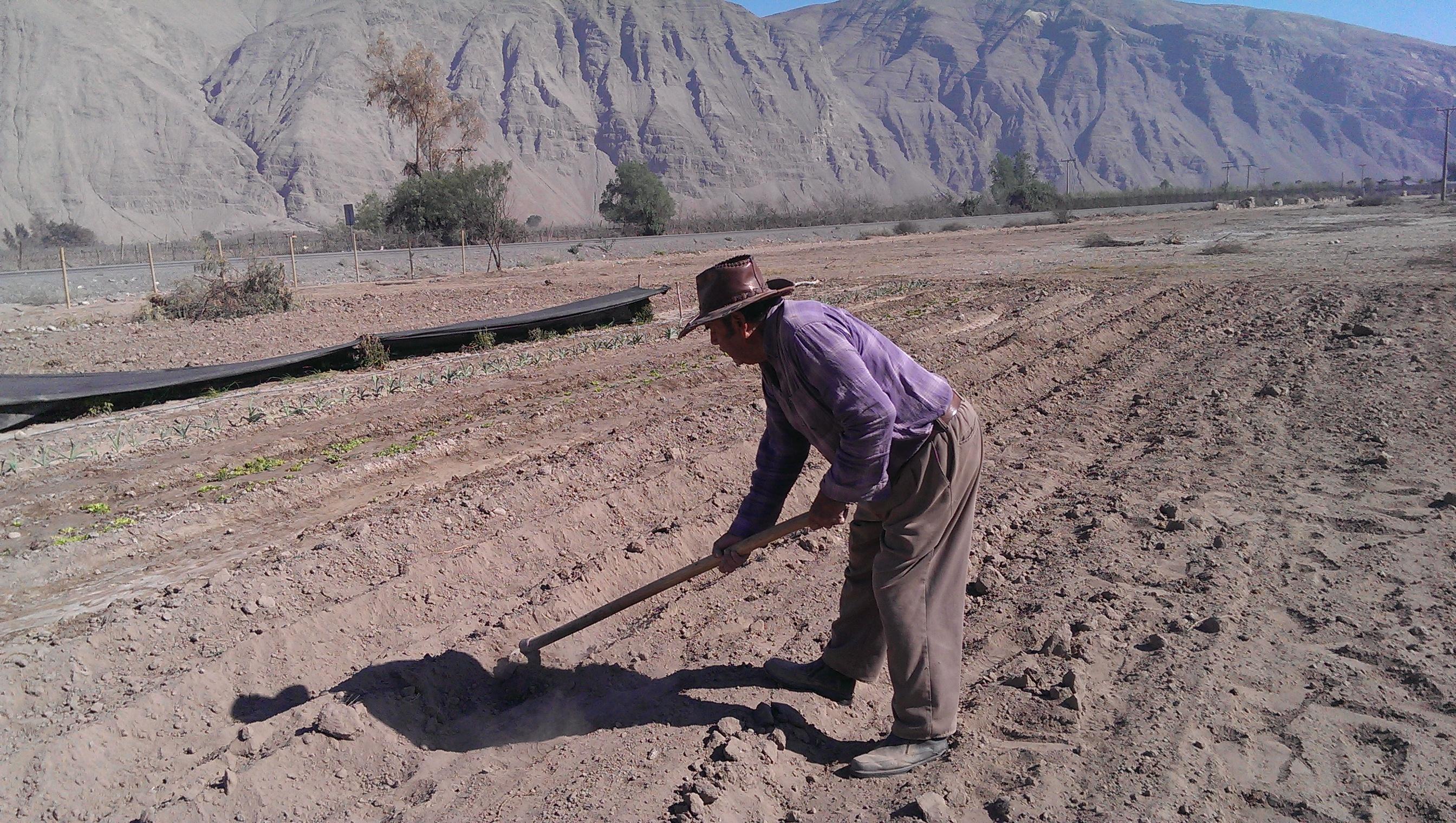 Bonificaciones entregadas por la CNR en provincia de Huasco superan los $1.500 millones en 2014