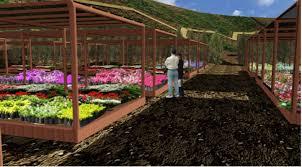 Carta al Intendente de Atacama sobre Jardín Botánico
