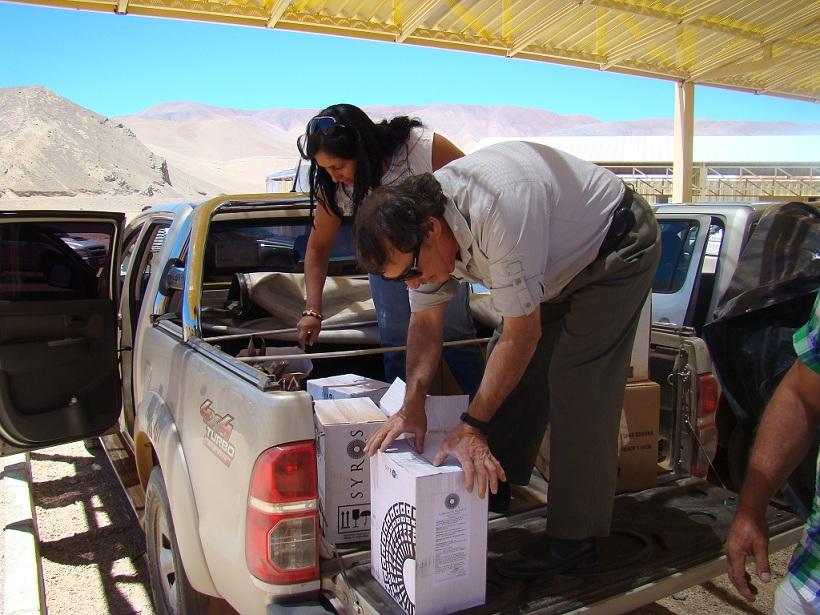 Inspectores fronterizos SAG: una labor de protección constante de la agricultura regional