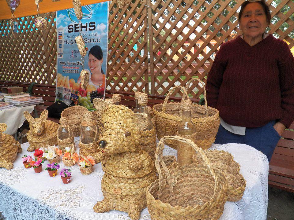 Vallenar comenzó con las actividades del Mes del Patrimonio Cultural