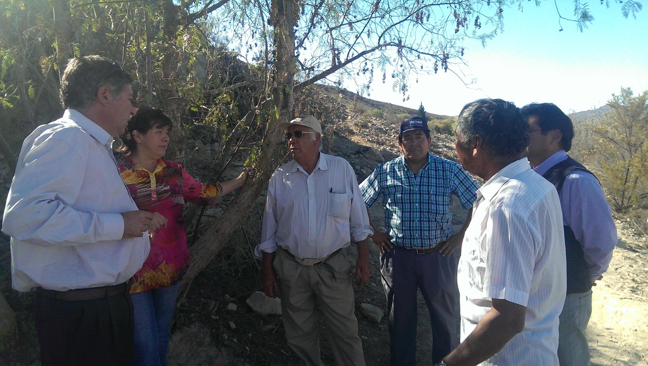 Indap evalúa en terreno daños en canal compañía de Vallenar