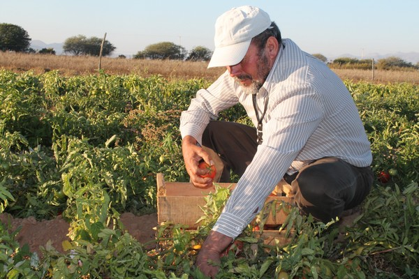 agricultores (2)