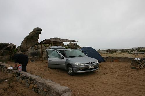 Evacuaron a 9 personas desde parque nacional LLanos de Challe por terremoto en Iquique