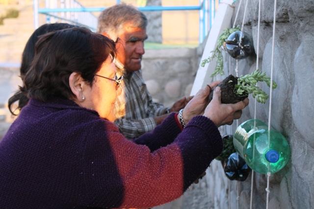 1er Huerto Comunitario en Vallenar (5)