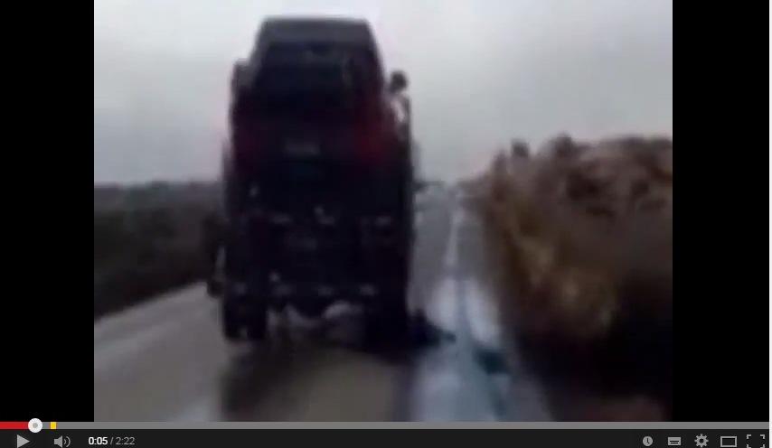 Video: Sujetos detenidos por arrastrar a perrita amarrada a camión en Vallenar