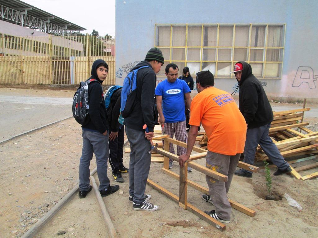 Notable iniciativa: Vecinos de Vista Alegre arborizan su sector