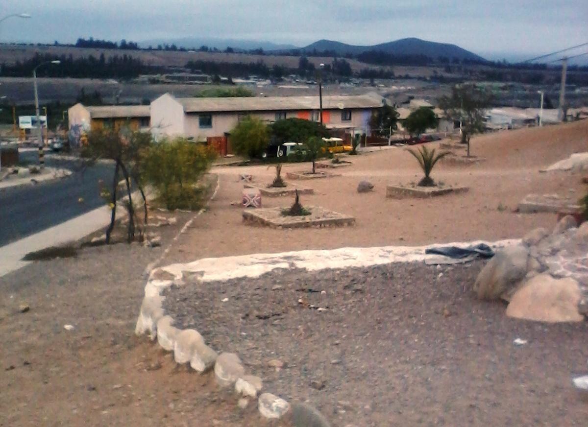 Vecino pide mayor preocupación de áreas verdes en Vallenar