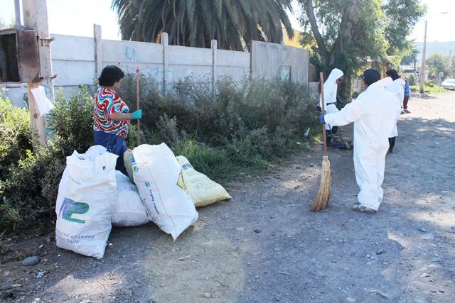 Municipio de Vallenar realizará Operativo de limpieza y de Vacunación Antirrábica