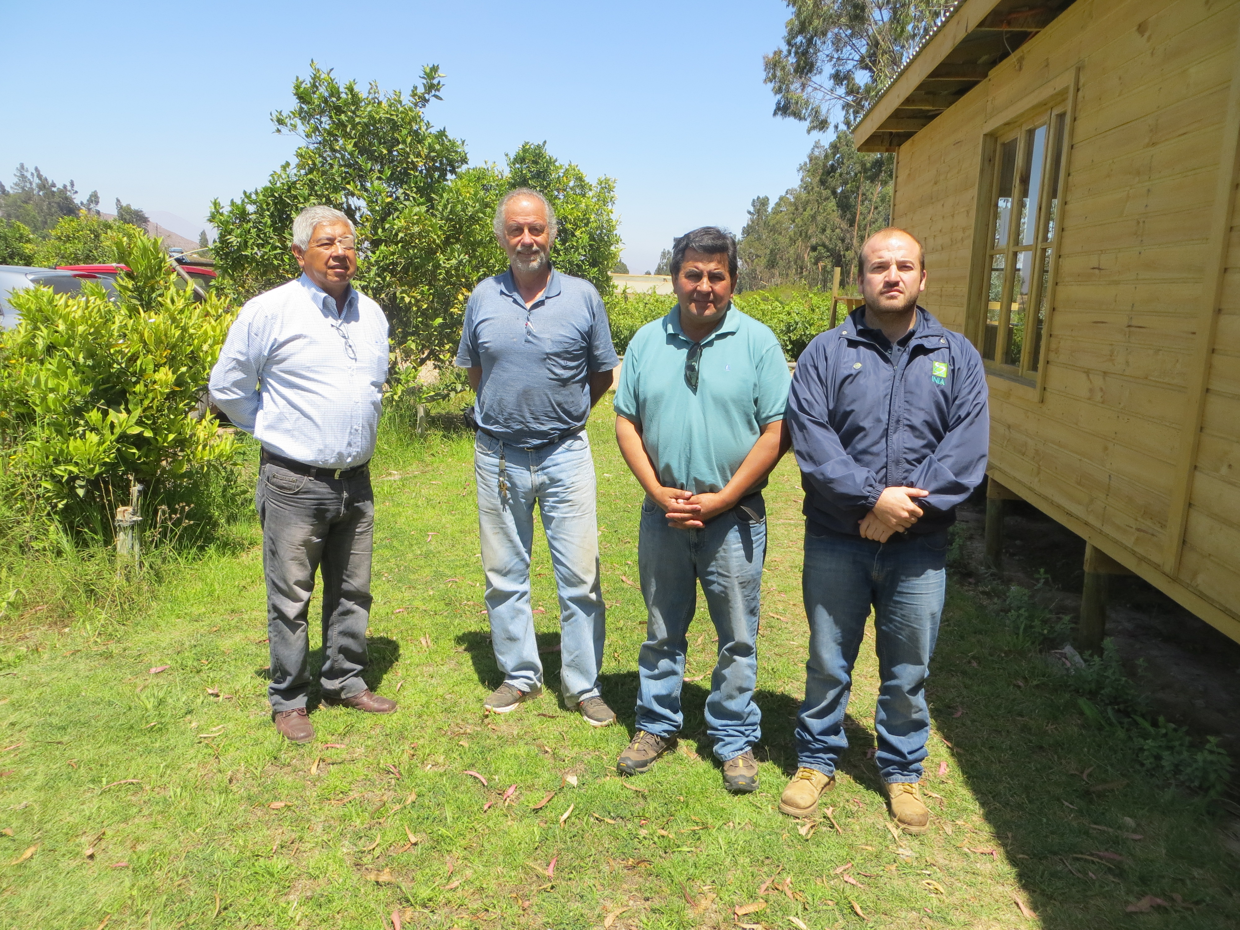 Panel de catadores buscan mejorar calidad de aceites del Huasco para obtener denominación de origen