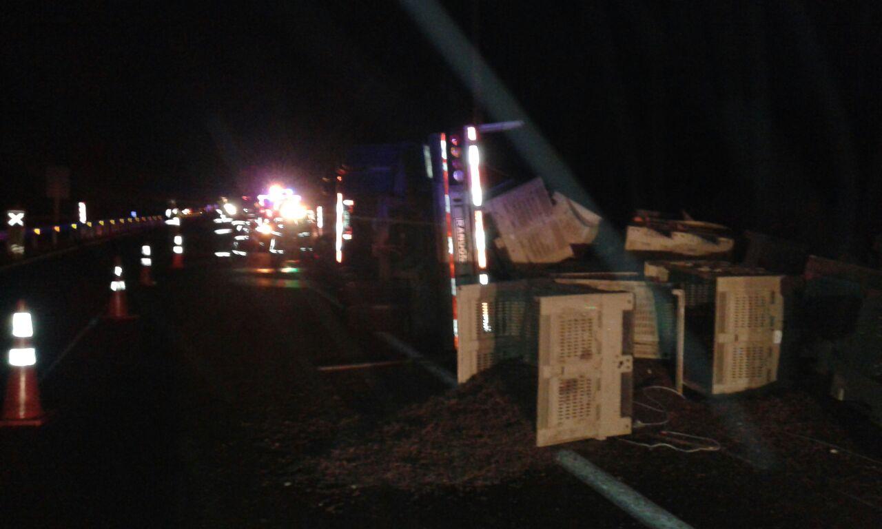 Tres lesionados deja volcamiento de camión con pasas en Vallenar