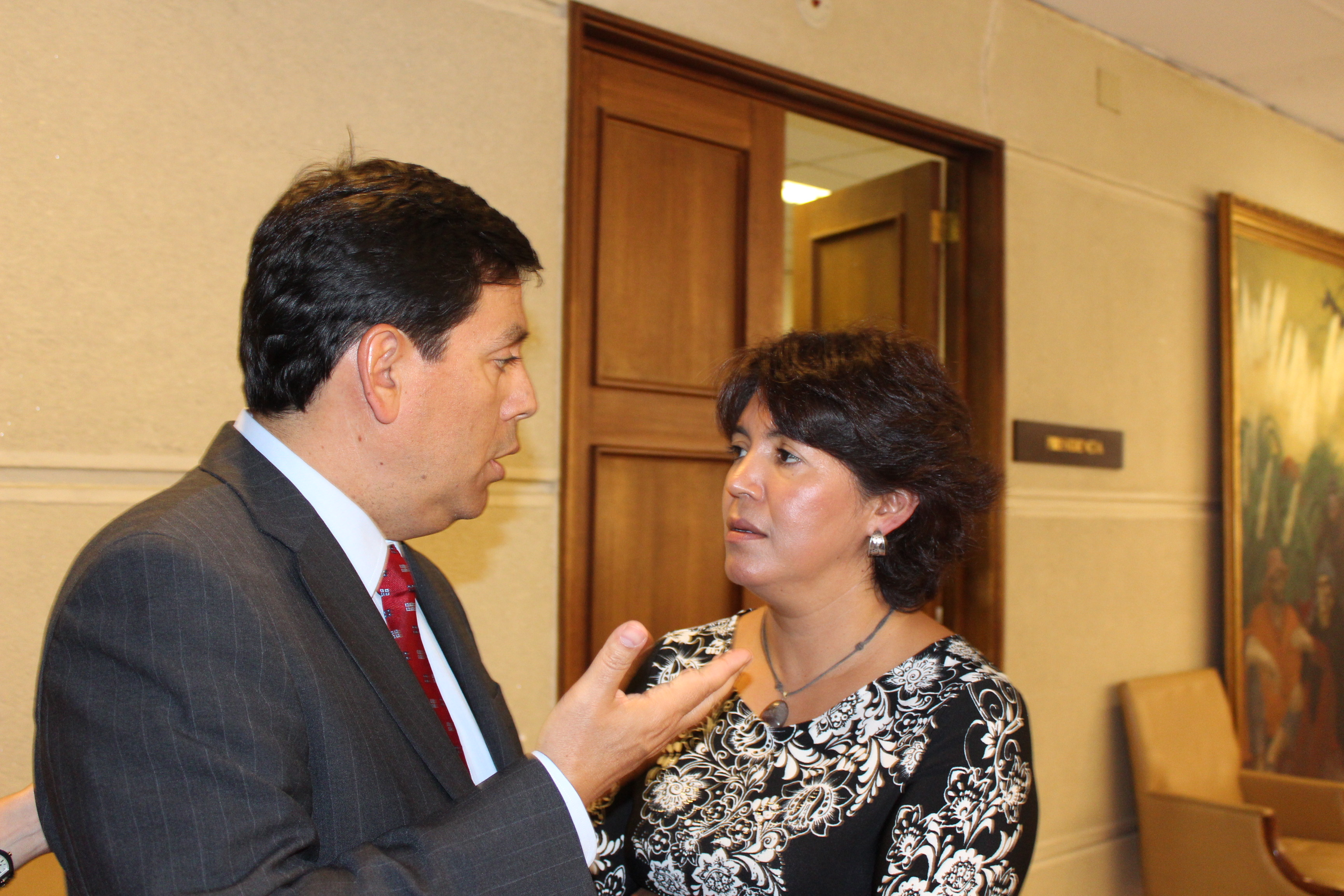 Provoste se reúne con ministro de Hacienda para solicitar ayuda a pequeños mineros