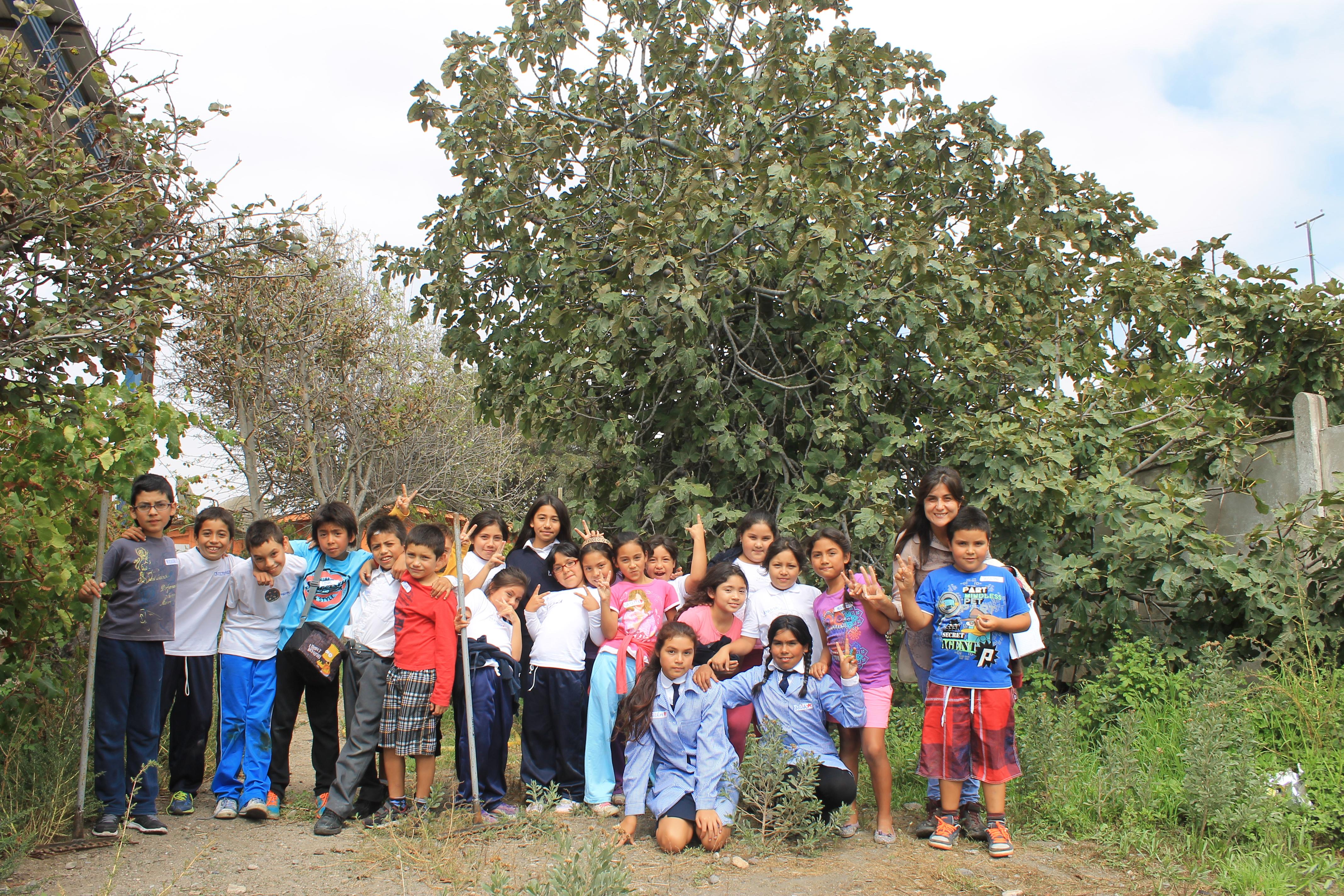 Notable: En Maitencillo dan el vamos a Huerto escolar comunitario