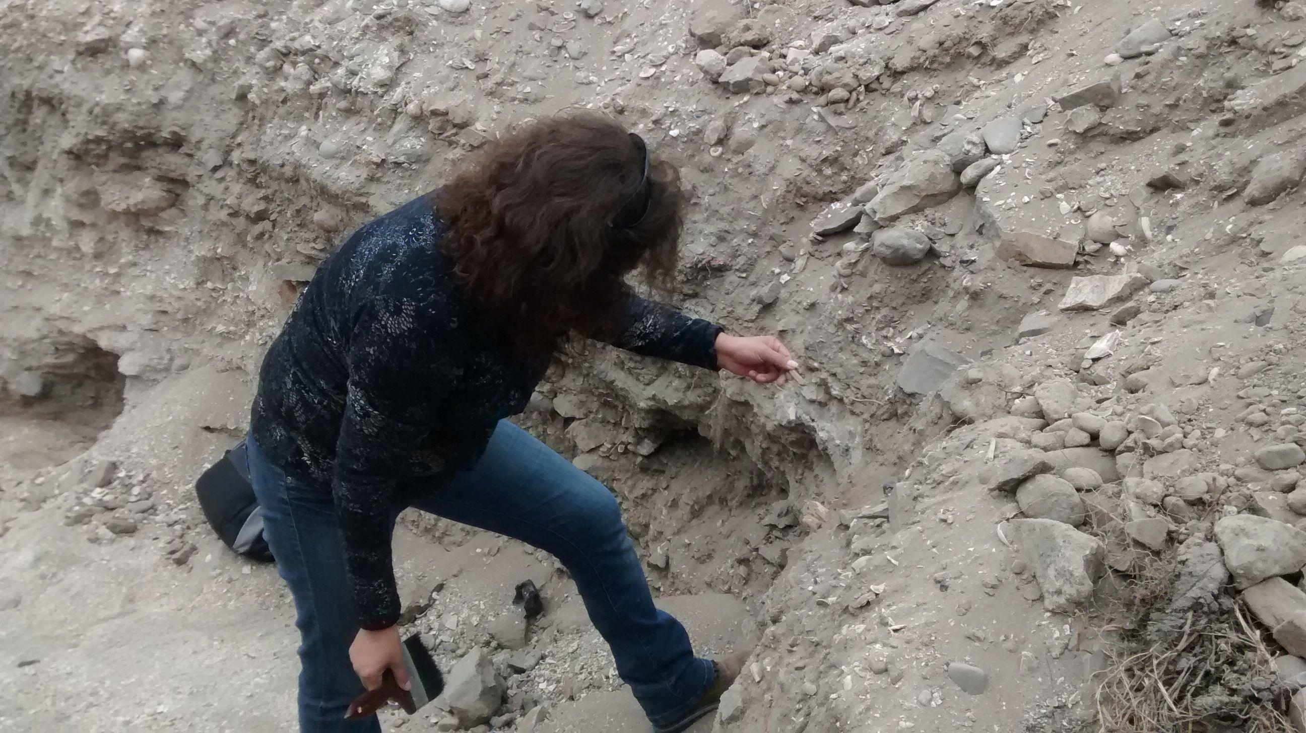 Fiscalía ordenó trabajo de perito forense tras hallazgo de osamentas en Huasco