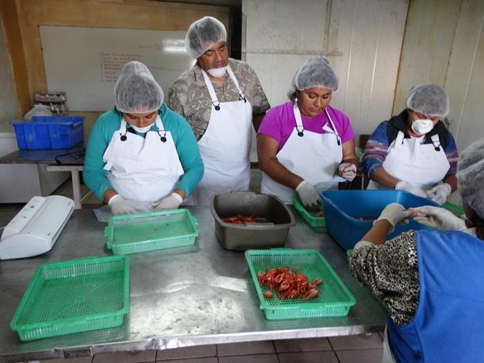 Mujeres del sector pesquero se capacitan para dar valor agregado a recursos no explotados en la zona