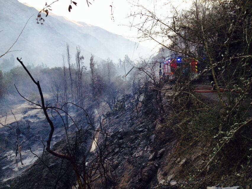 """Incendio en """"La Higuerita"""" deja 200 afectados, 1 damnificado y dos viviendas siniestradas"""