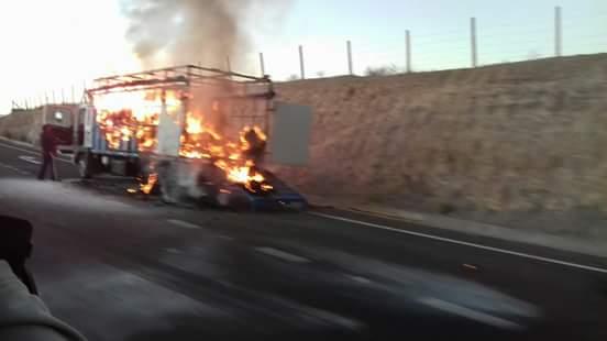 Animales resultan heridos luego de quemarse camión en que eran transportados