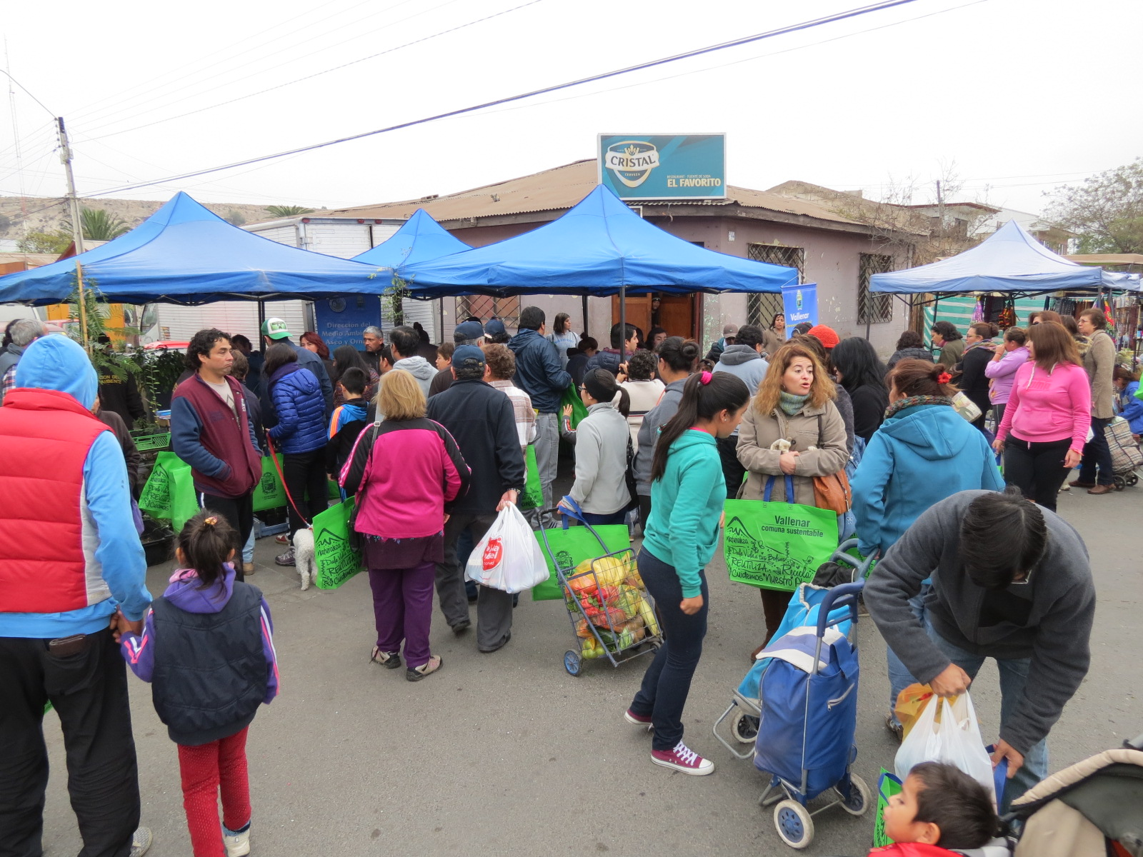 Inician campaña para reducir uso de bolsas plásticas en Vallenar