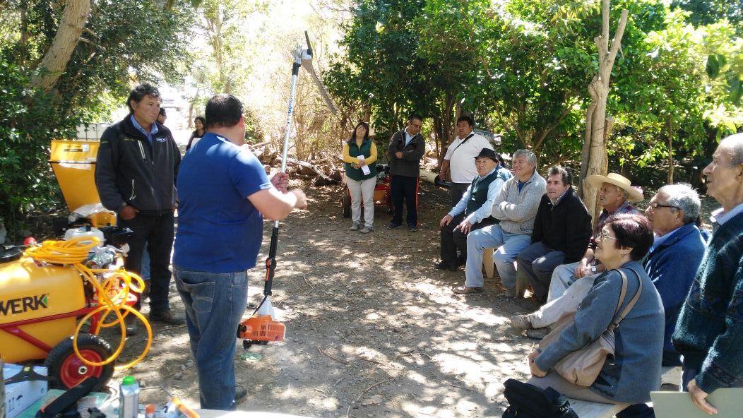 Mesa de diálogo y día de campo viven agricultores en Freirina y Alto del Carmen