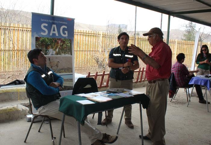 Plan de esterilización impulsado por el gobierno en la provincia de Huasco