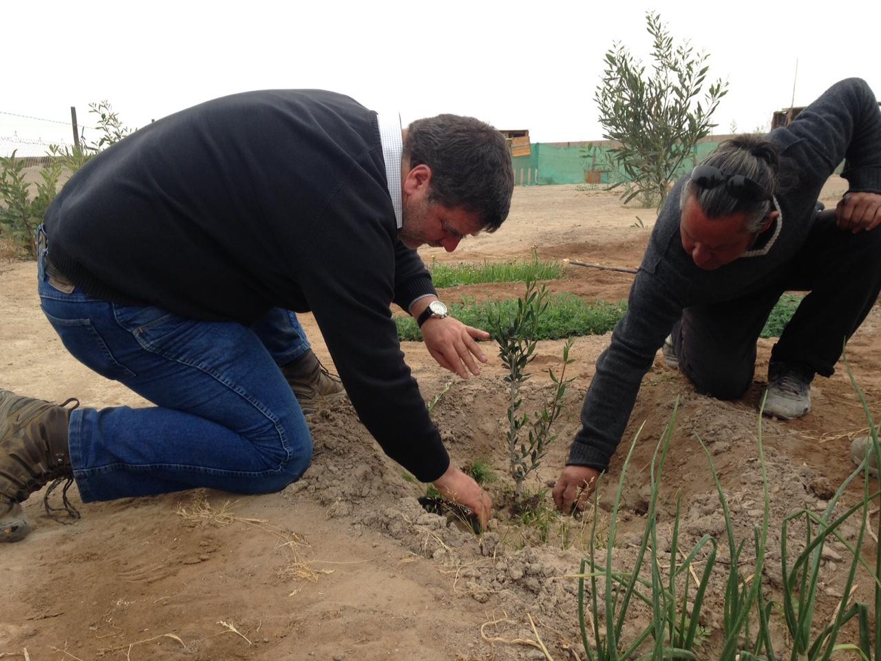 AES Gener obtiene el Premio al Buen Ciudadano mención innovación por programa desarrollado en Huasco