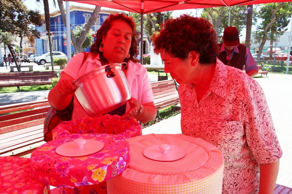 Unión Comunal de Juntas de Vecinos Rurales cierra con éxito proyecto de Cocinas Brujas en Vallenar