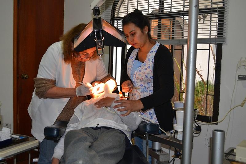 Cerca de 250 niños de Huasco recibieron atención a través de programa dental de Guacolda