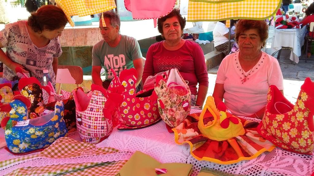 Con éxito se realiza Expo Anual del Programa de Monitoras Municipales de Vallenar