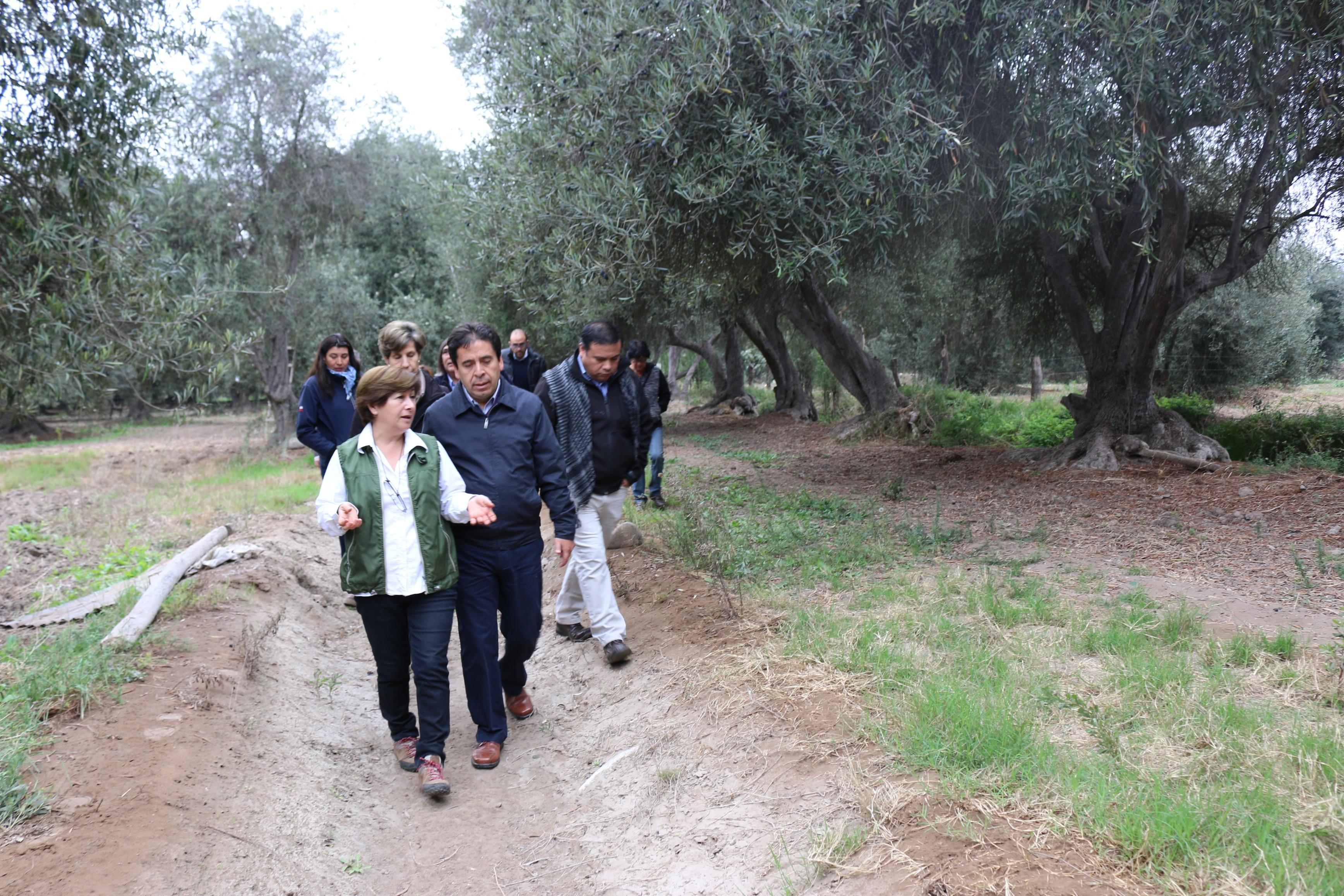 Gobierno junto a comunidades de Freirina y Huasco definen programas de inversión para zonas rurales