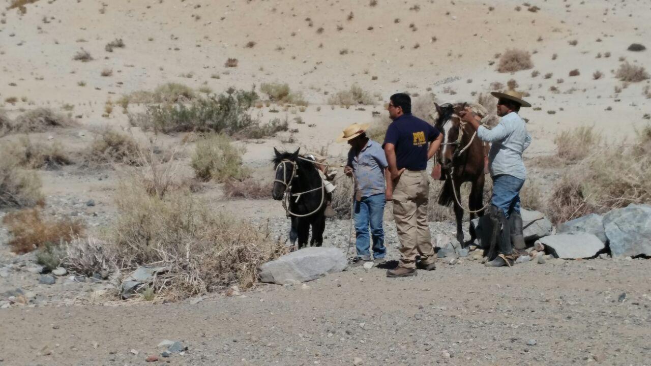 PDI REALIZA FISCALIZACIÓN PARA EVITAR MATANZA DE ANIMALES PROTEGIDOS EN SECTOR CORDILLERANO DEL HUASCO