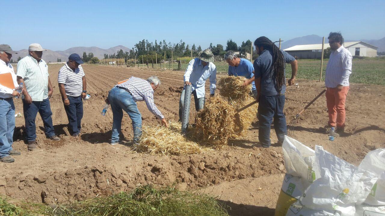 Realizan taller sobre manejo, fertilización y conservación de suelos en Vallenar