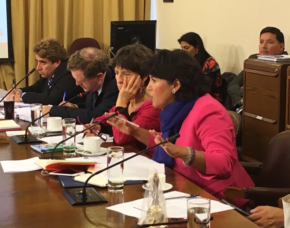 Provoste y nueva ofensiva contra Aguas Chañar: comisión analiza denuncias contra la empresa