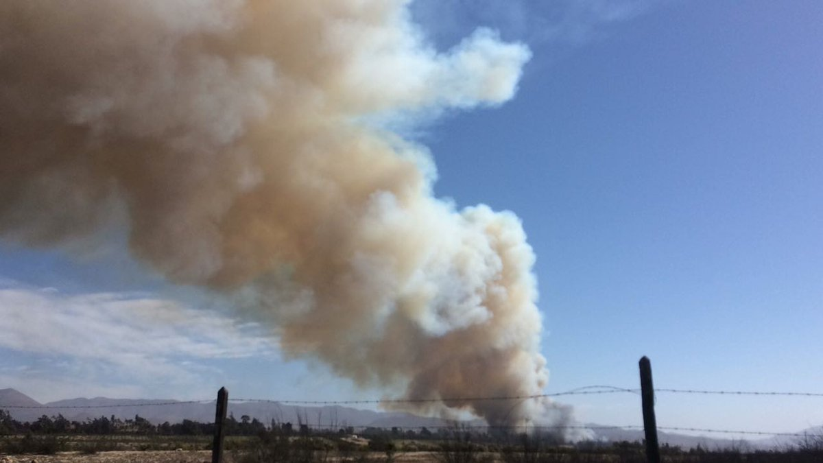 Declaran alerta amarilla por incendio en Freirina