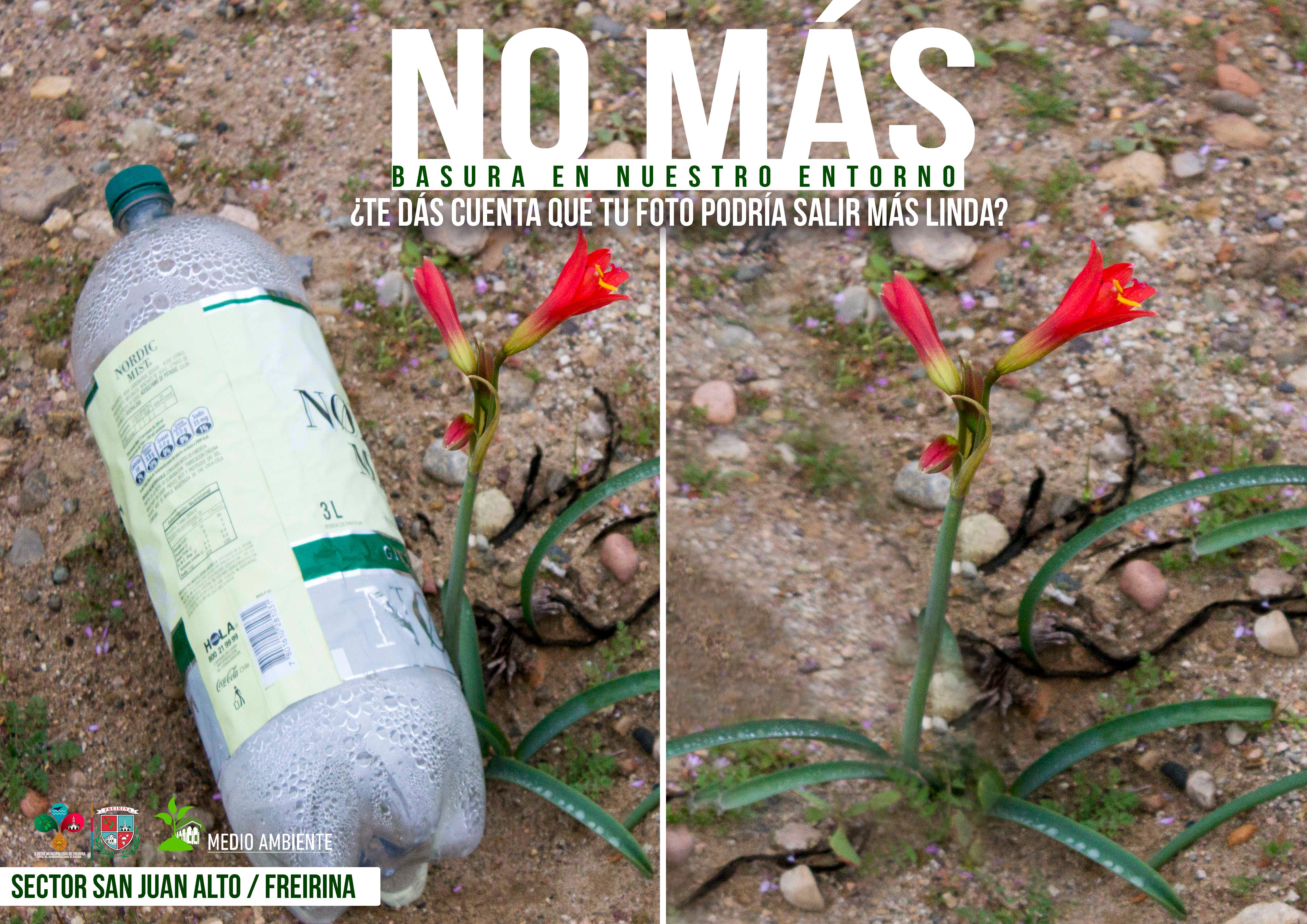 """""""No más"""", la campaña del municipio de Freirina que busca cuidar el medio ambiente"""