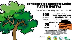 Extienden plazo para concurso de arborización en Vallenar