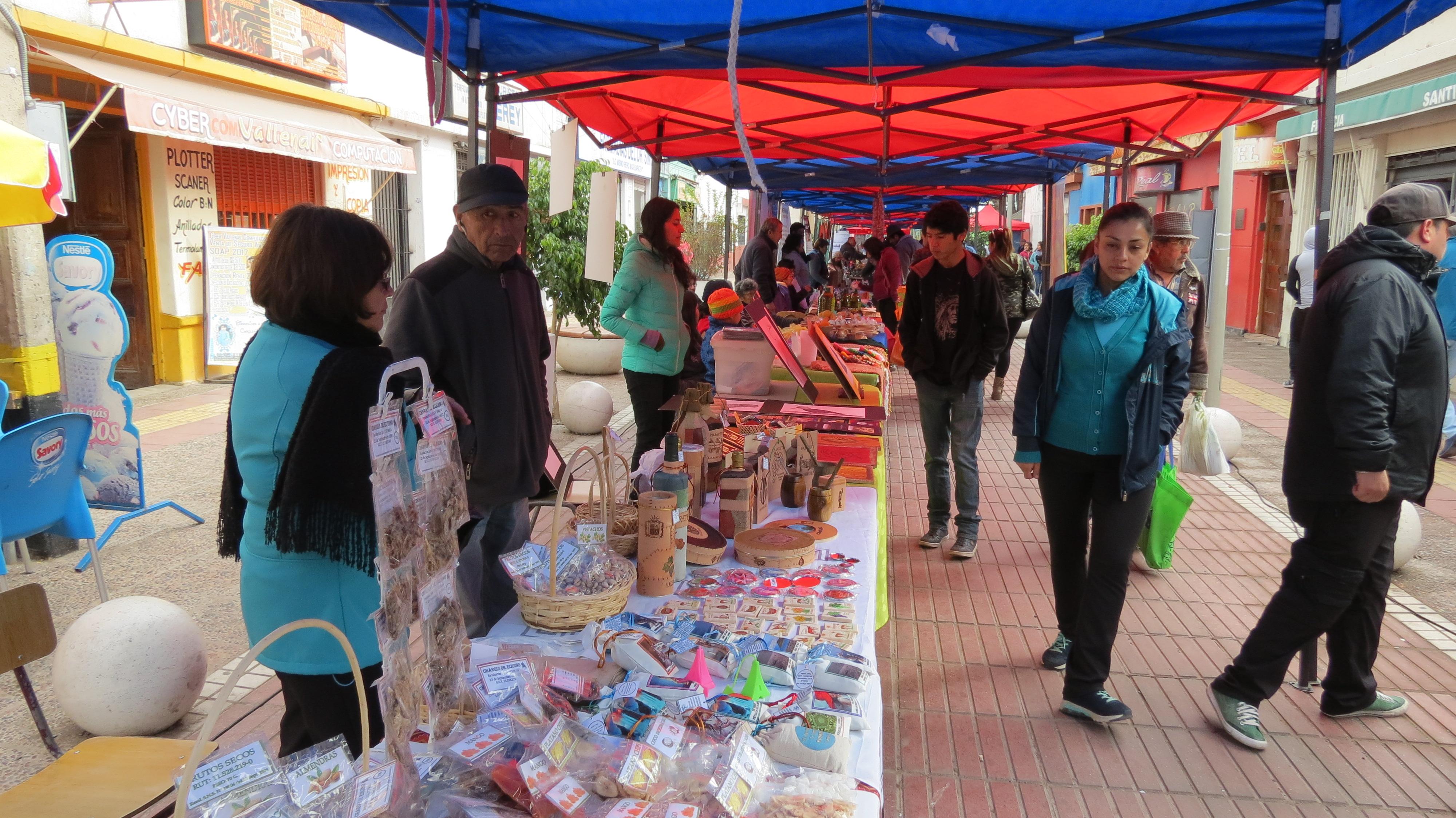 Realizaron nuevo paseo de la Cultura en Vallenar