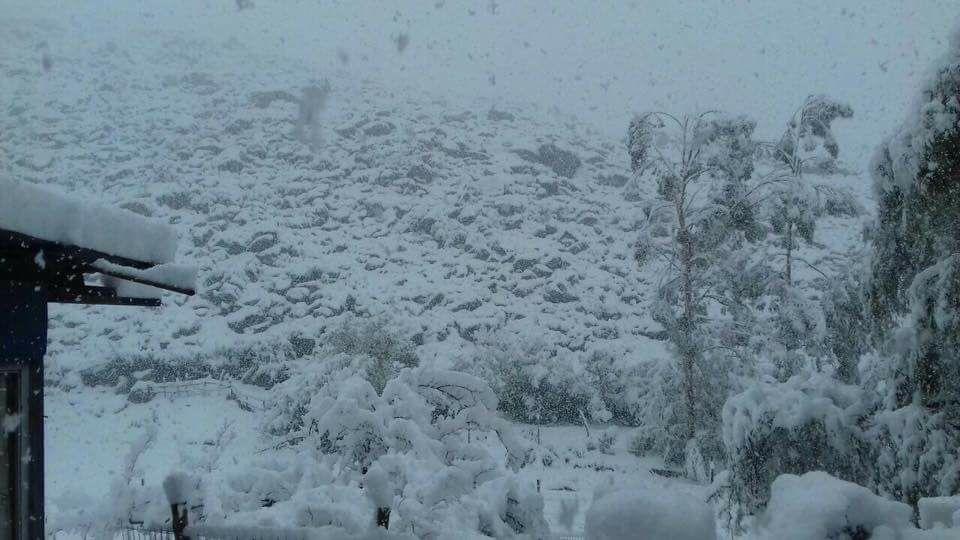 Espectáculo de la naturaleza: hace 30 años que no se registraba nieve en Alto del Carmen