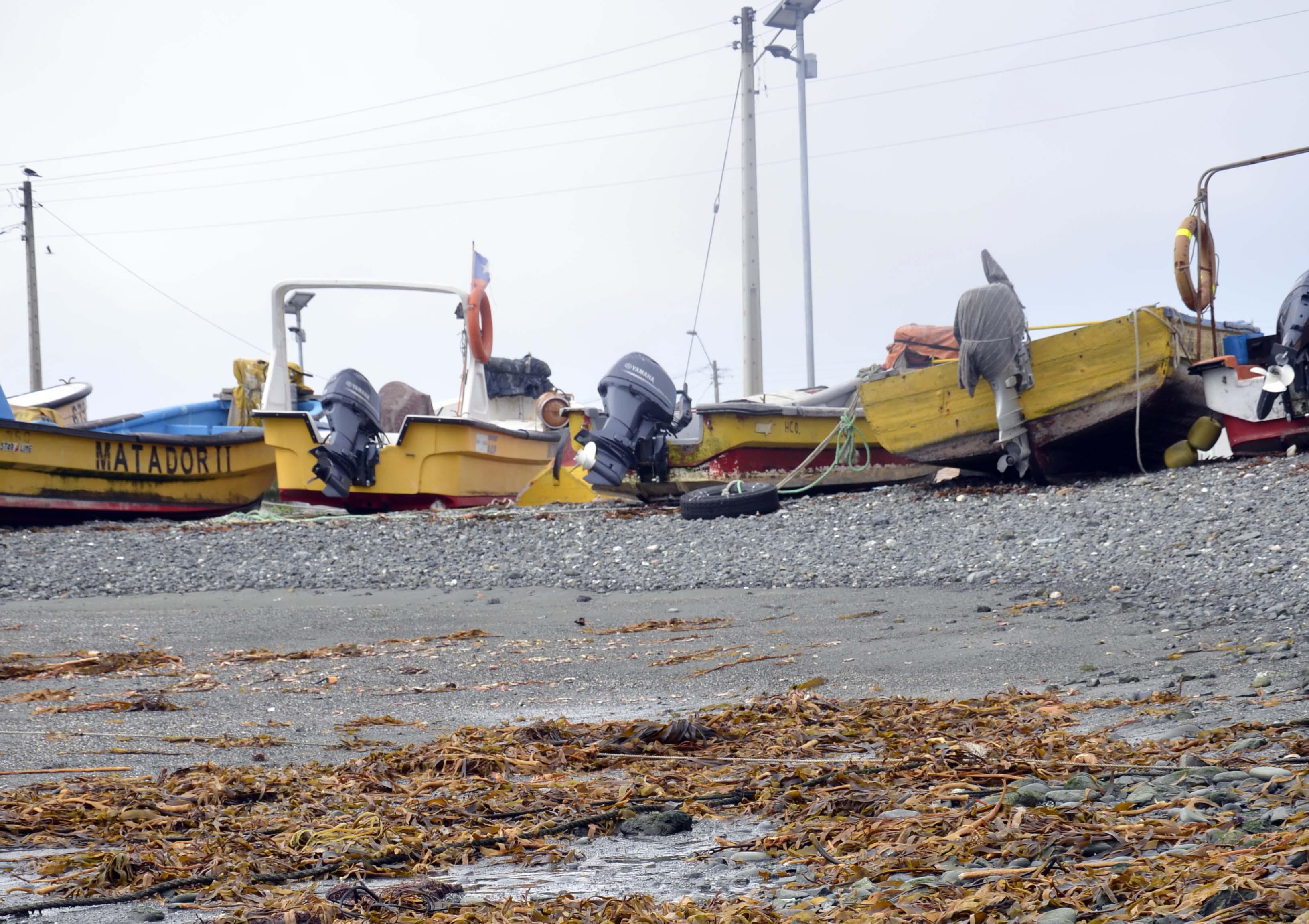Gobierno se reúne con la Mesa de Pesca de Freirina para trabajar  por el desarrollo del borde costero de Atacama