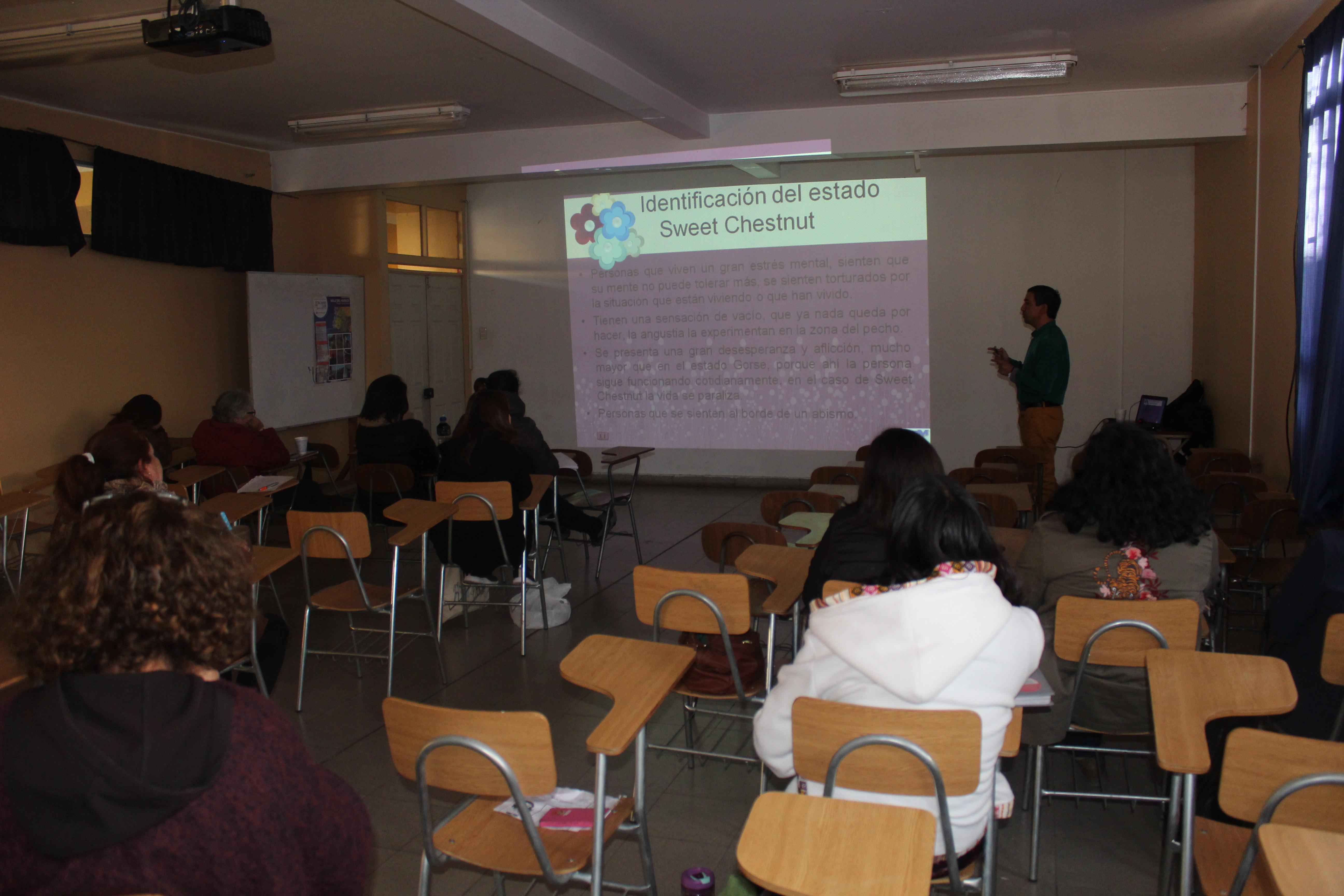 Flores de Bach en el Aula del Siglo XXI:  Un Proyecto Pionero en la Educación Pública del valle del Huasco.
