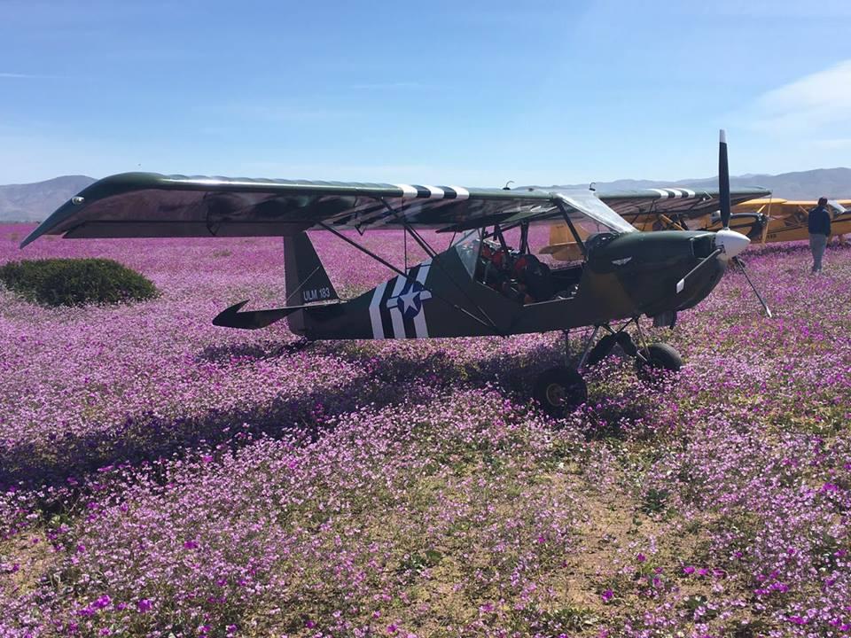Terreno donde aterrizaron avionetas son privados y complica sanción a pilotos