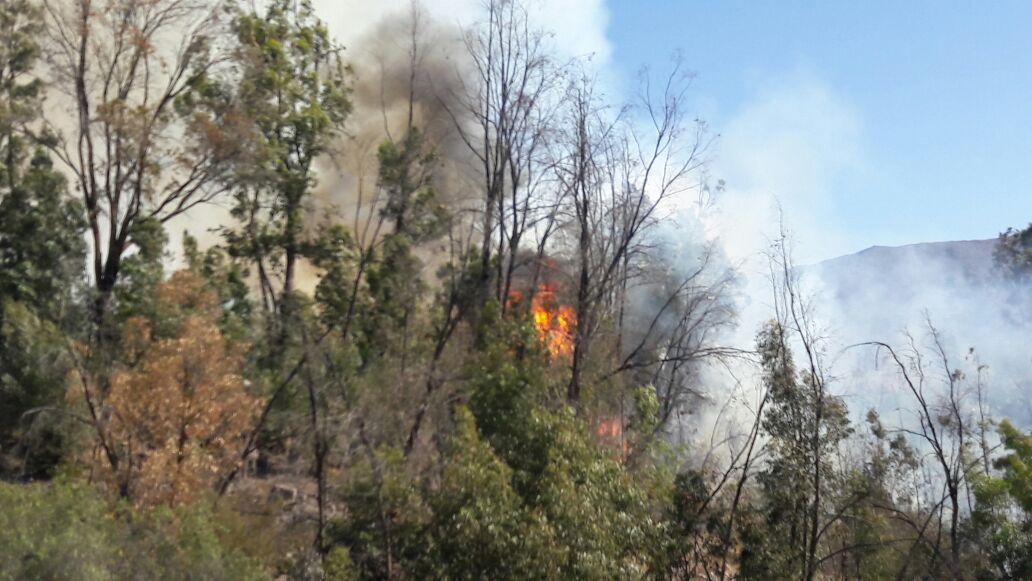 Cancelan alerta amarilla por incendio en Vallenar