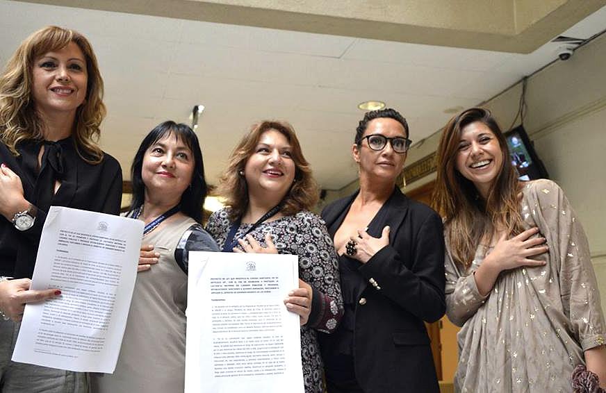 Diputada Cicardini impulsa proyecto que protege derecho a amamantamiento